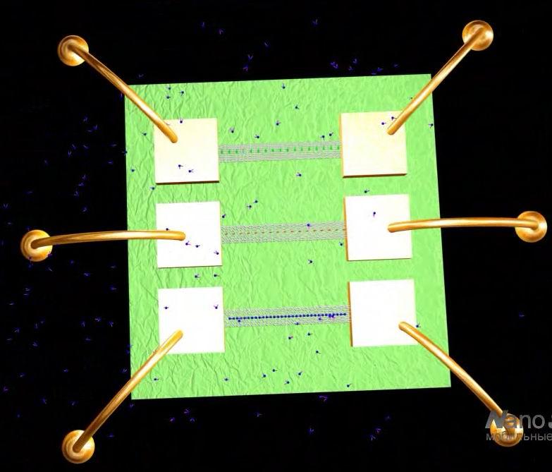 Наносенсоры - основа электронного носа